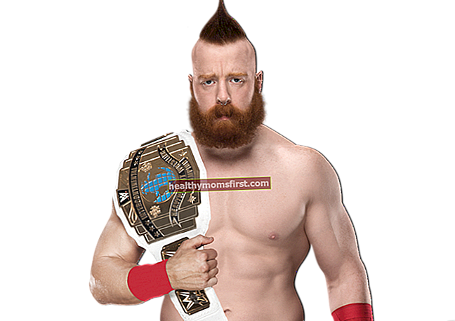 WWE Wrestler Sheamus Statistik Berat Badan