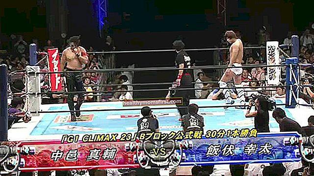 Shinsuke Nakamura Tinggi, Berat, Umur, Statistik Tubuh